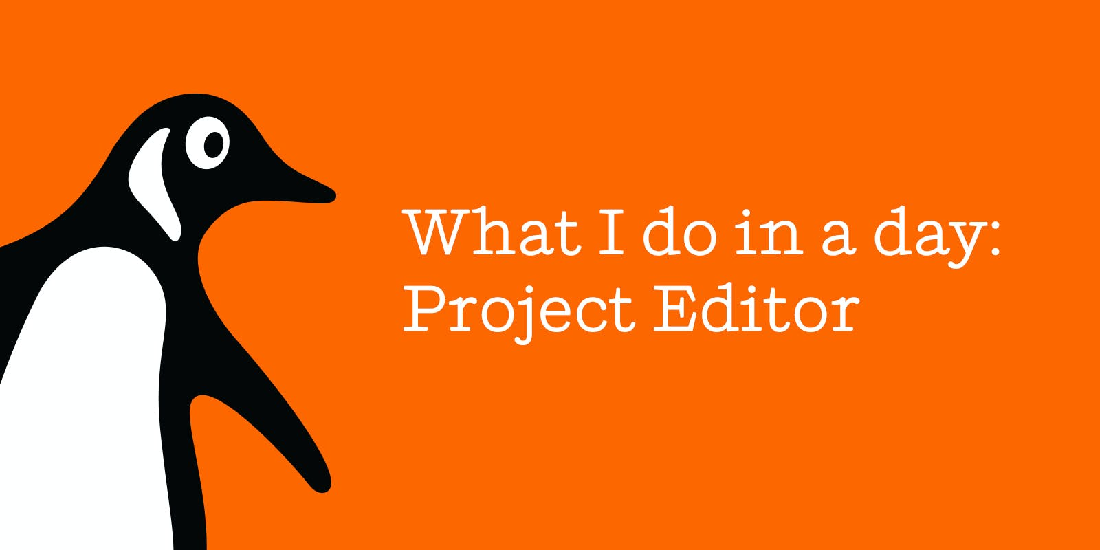 What I do in a day: Project Editor